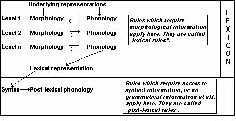 inflectional morphology